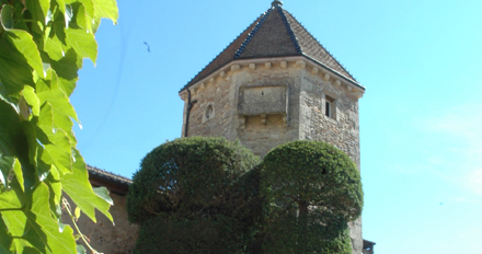 chateau_fuisse01.jpg